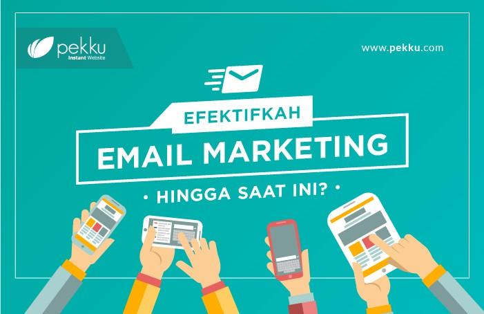 Efektifkah email markketing hingga saar ini?-3